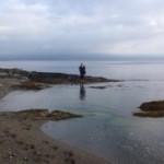 Wild Atlantic Way Seaweed Salad