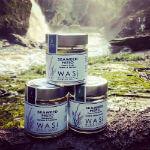 WASI Seaweed Pestos